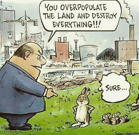 overpopulate-rabbit-comics