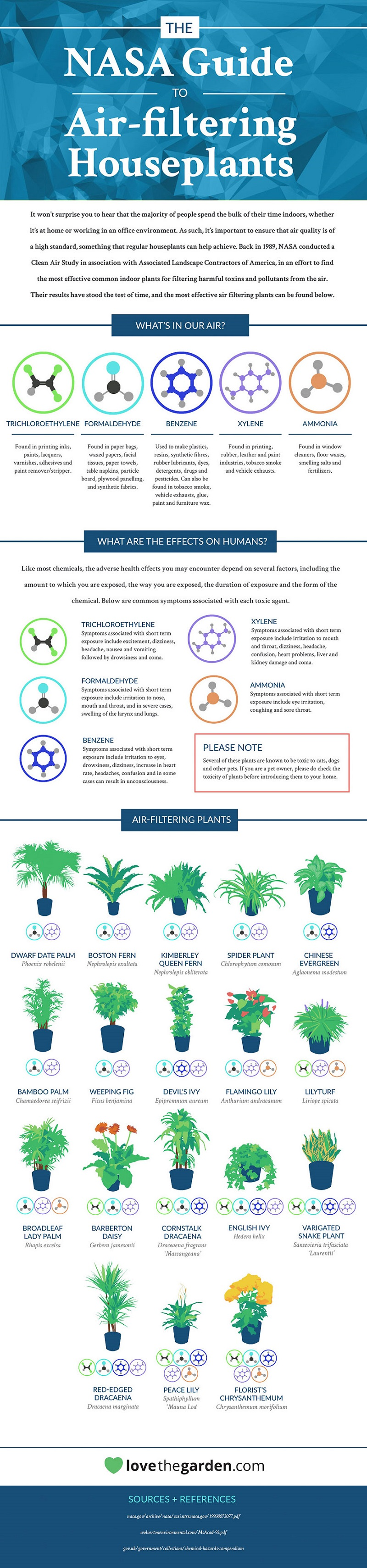 best-air-filtering-houseplants-nasa-infographic