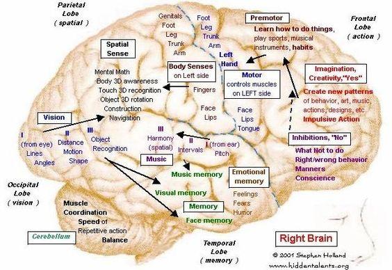right brain talents