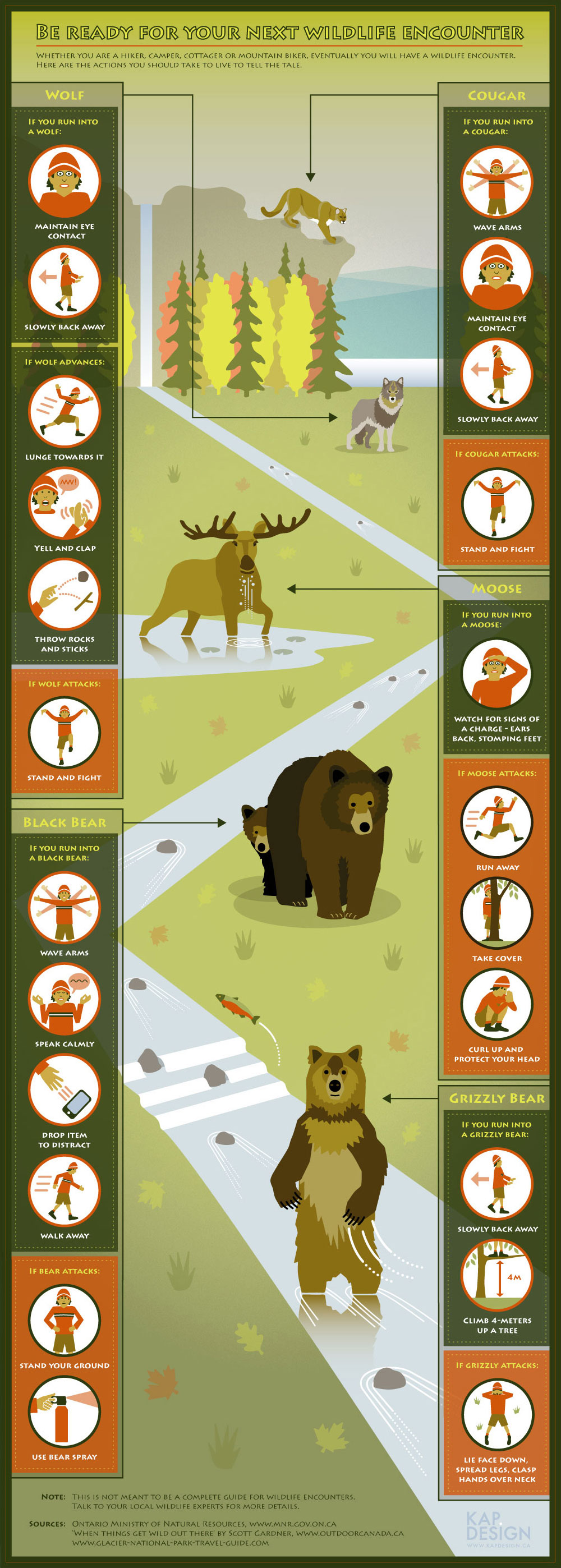 wildlife encounters tactics infographic