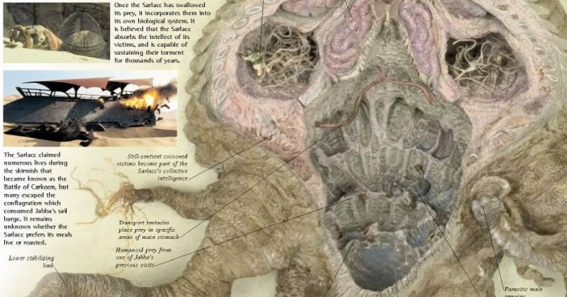 Actual Anatomy of the Sarlacc Pit – Earthly Mission