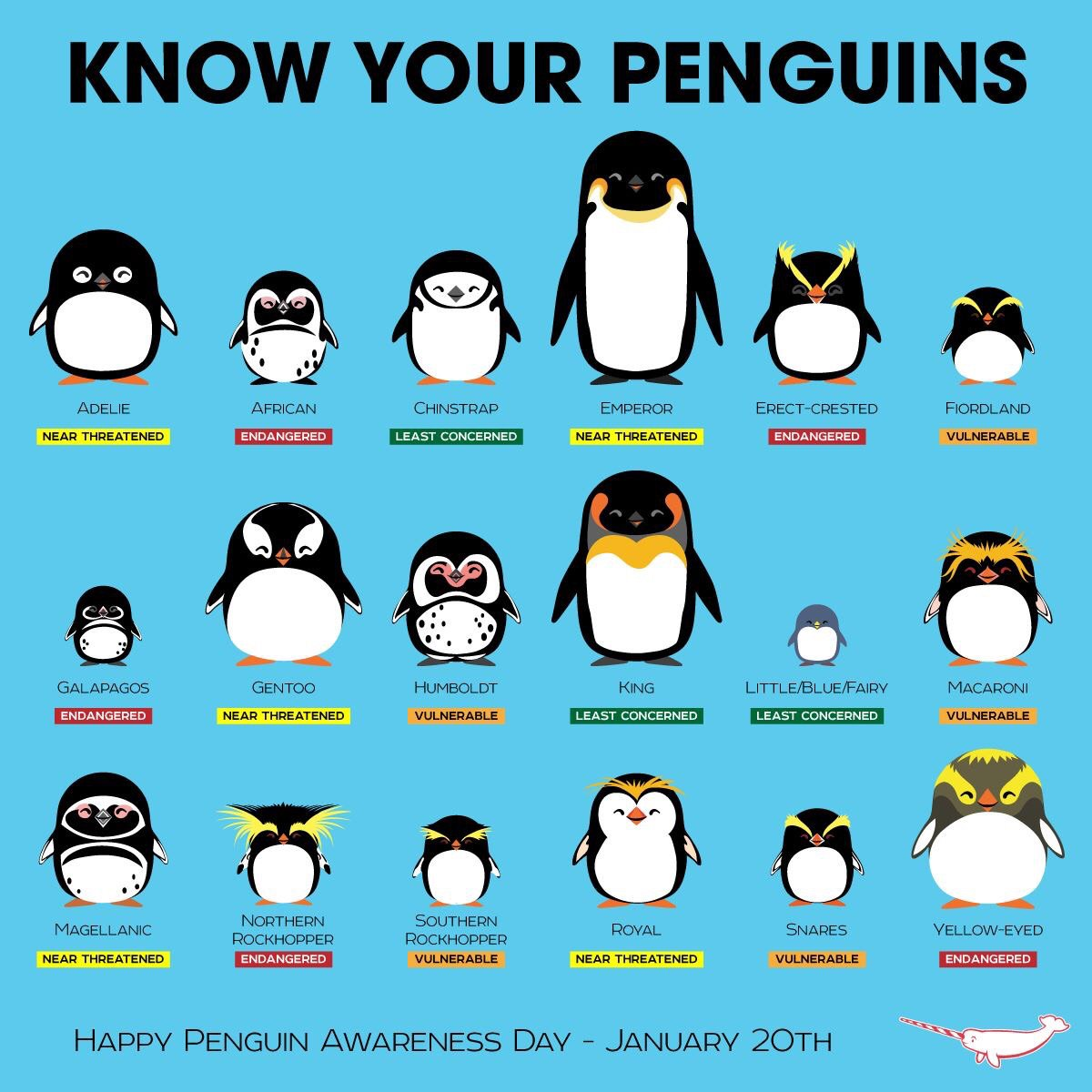penguin identification chart