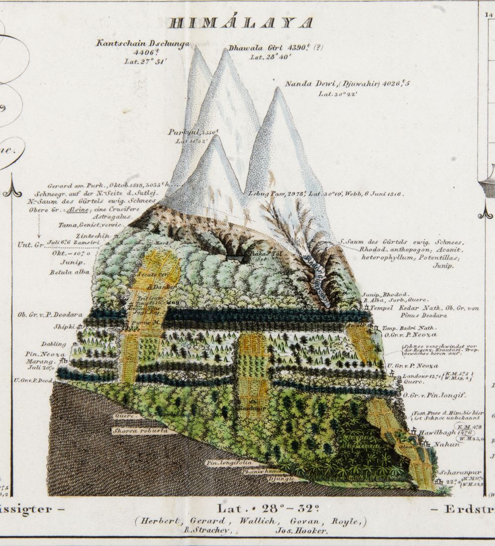 H. Berghaus, 1851, Physikalischer Atlas - Himalaya