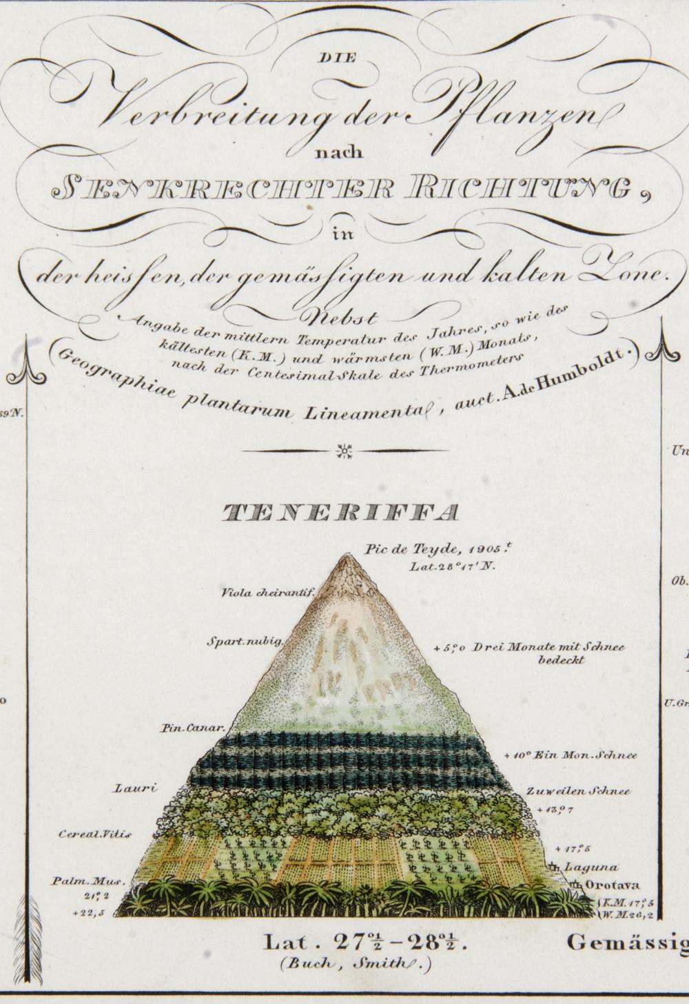 H. Berghaus, 1851, Physikalischer Atlas - Teneriffa