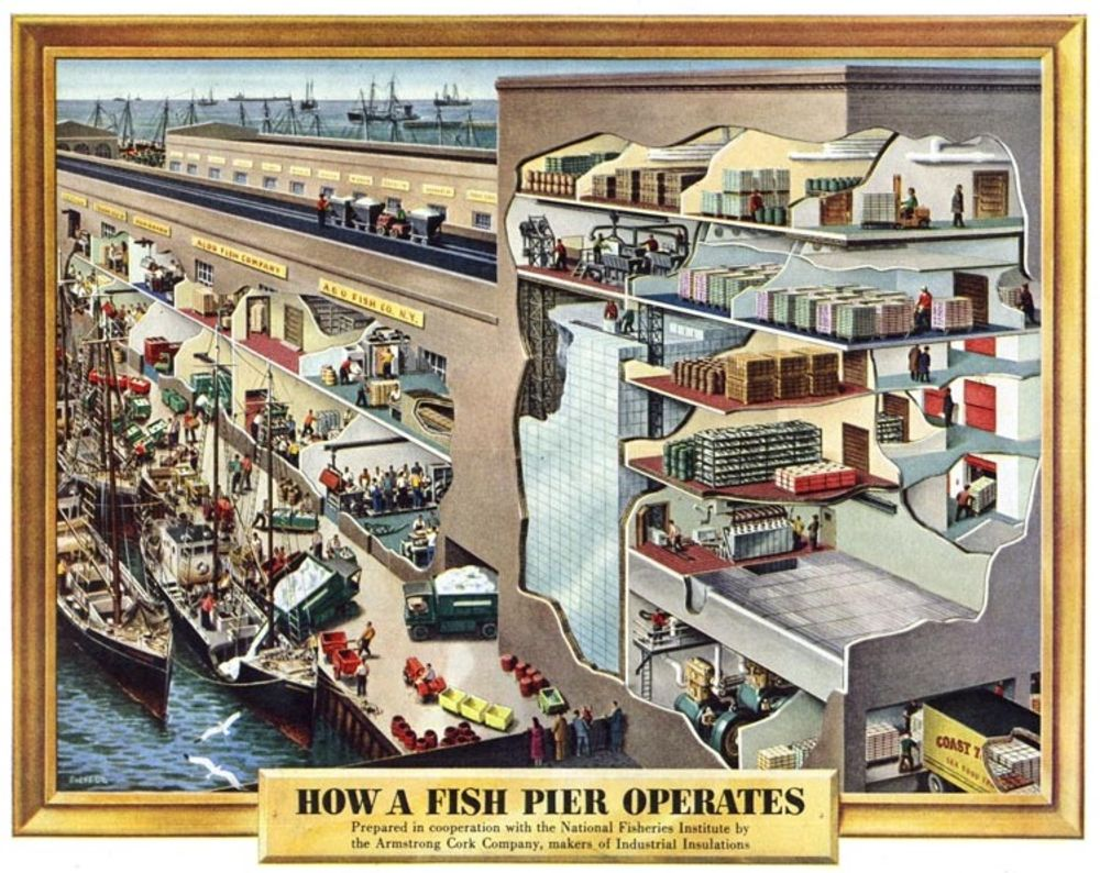 how a fish pier operates