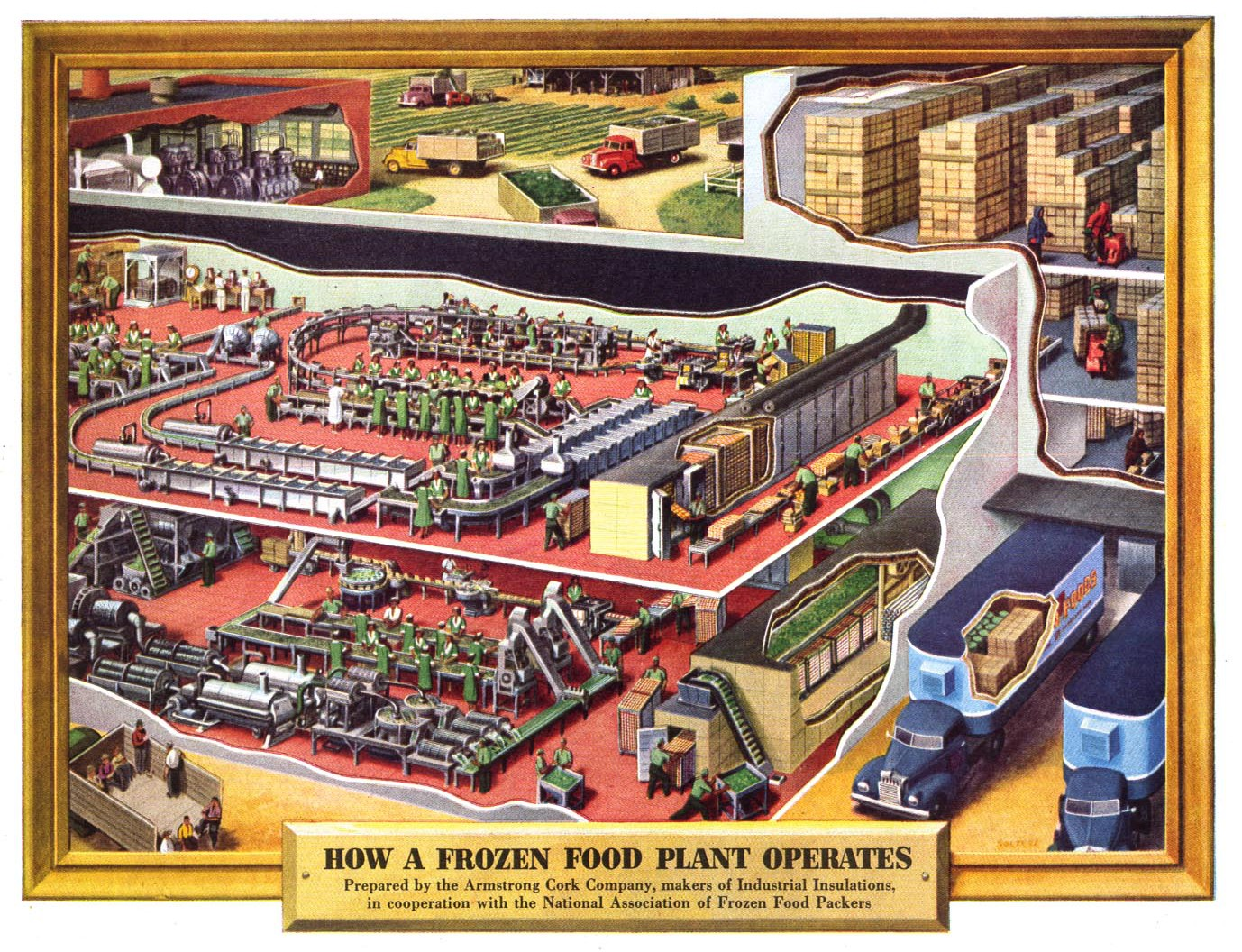 how a frozen food plant operates