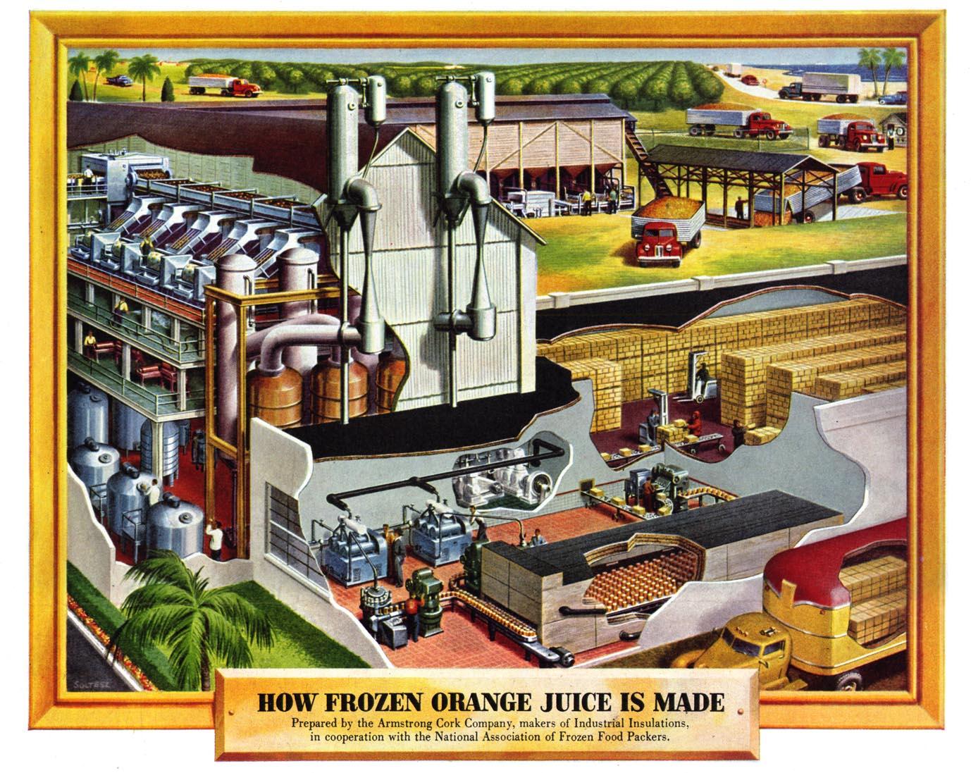 how frozen orange juice is made