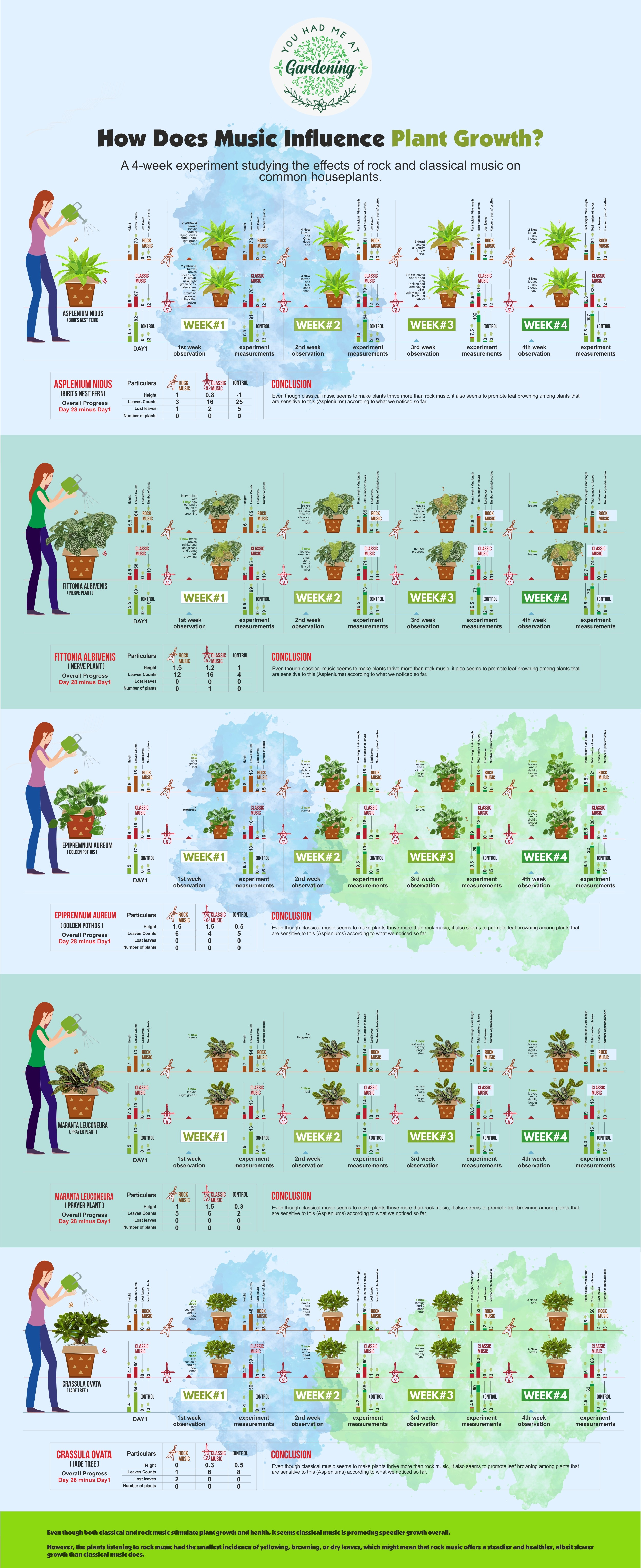 How Music Influences Plant Growth