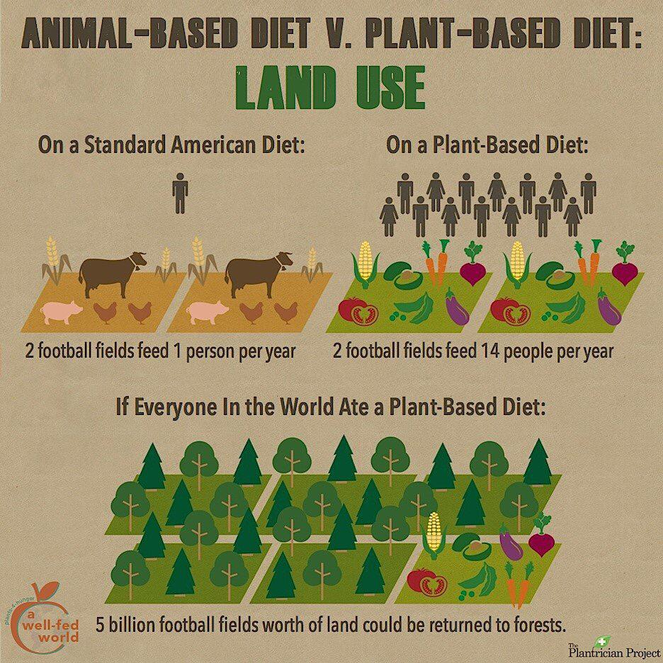 Land Required for Animal Based Diet vs Plant Based Diet