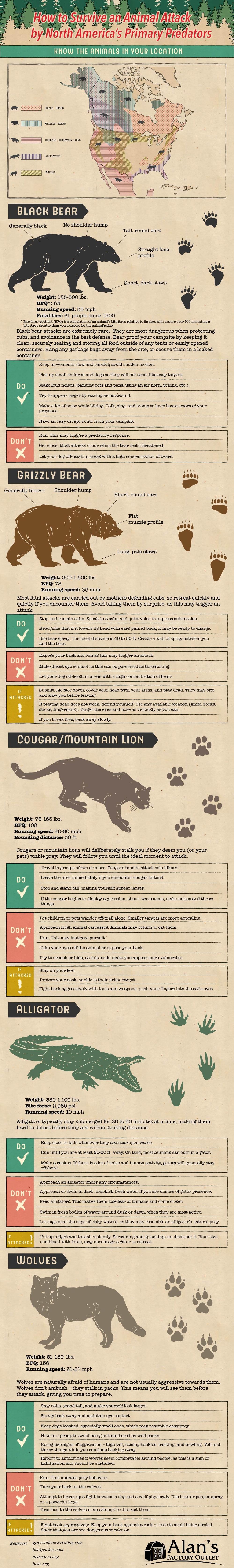 animal attack survival